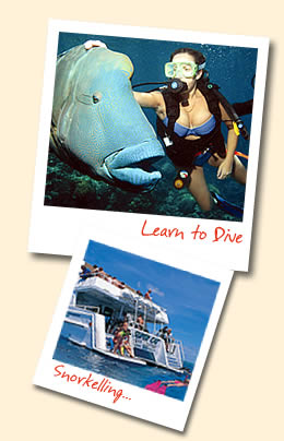 Learn To Dive – Open water