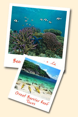 Reef day trips