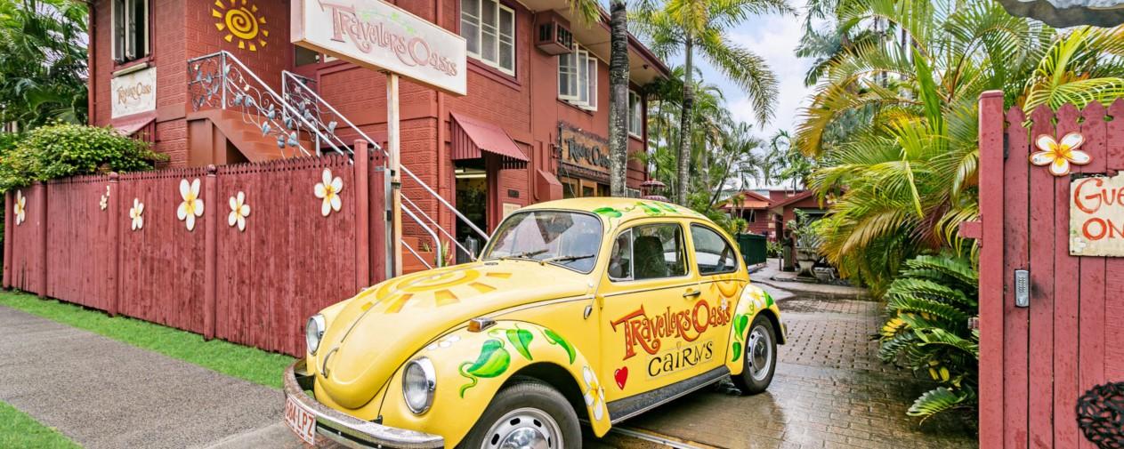 travellers oasis beetle